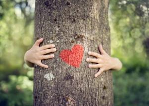 hænder omfavner et træ hvorpå der er malet et rødt hjerte